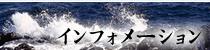 民宿 城ヶ島 宿泊